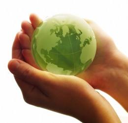 sostenibilidad-madera-vive_3